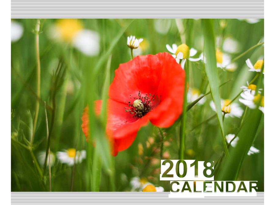 橫式桌曆製作,便宜優質的桌曆、月曆印刷服務-捷可印