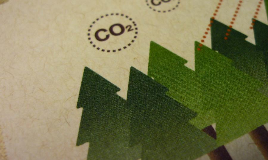 間伐紙-提供少量美術紙訂購-捷可印
